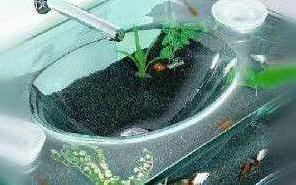 【四维装修】:智慧生活有风采,奇妙鱼缸面盆引人入胜