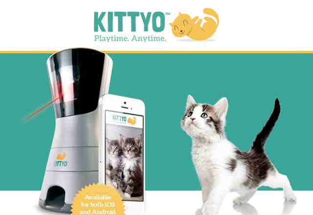 Kittyo支持远程看护宠物,还能逗喵星人