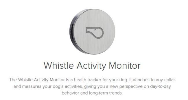 狗狗的专用穿戴设备Whistle可以跟踪活动