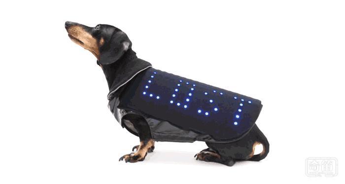 防丢神器Disco Dog智能宠物马甲还能示爱