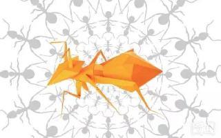 这个世界有点不一样了?是你与其他蚂蚁的关系变了—也说社群营销