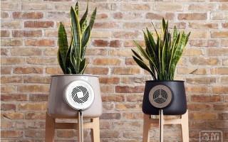 只听说植物能净化空气 原来花盆也能净化