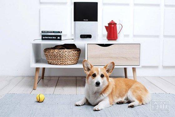 远程喂狗神器PetCube Bites 还能实时看到狗狗的动态