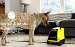 智能遛狗机器人 可以迅速轻松的让我们和宠物们联系到一起