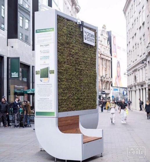 一款可净化空气的椅子City Tree,进入英国街头