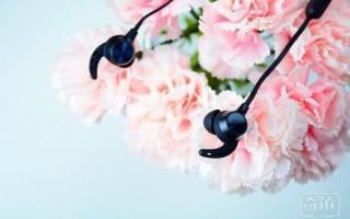 蓝牙耳机哪个牌子好?史上最残酷15款热门蓝牙耳机横评